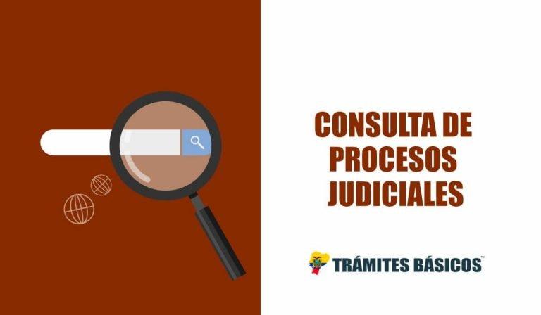 consulta de causas de la funcion judicial
