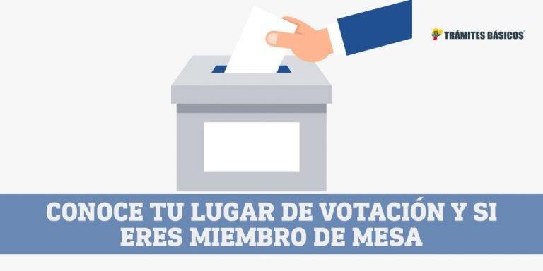 Consultar lugar de votacion Elecciones Ecuador CNE