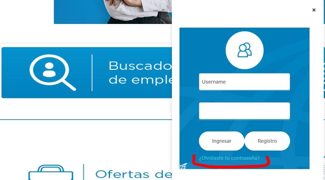 Ingreso socio empleo ecuador