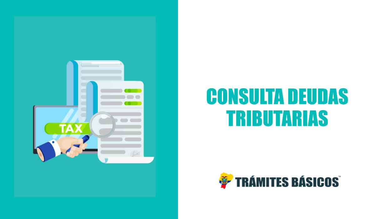 Consulta de deudas tributarias SRI