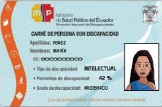carnet de discapacidad