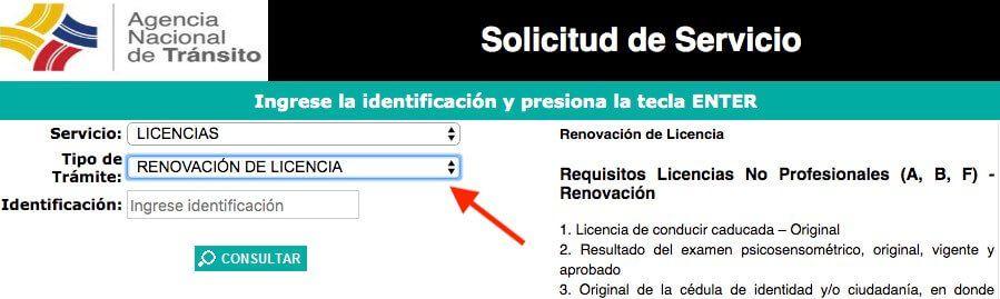 Turno para renovar la licencia