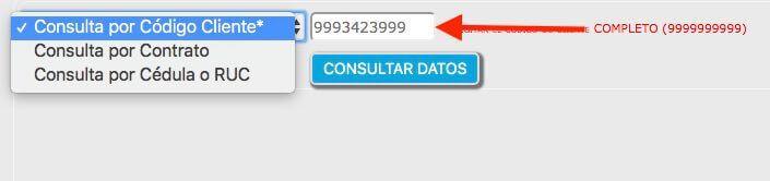 Consulta planilla de luz Quito
